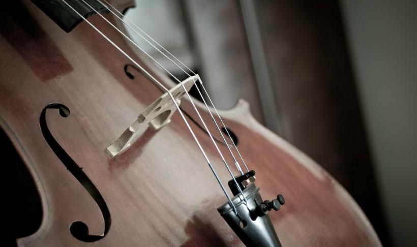Birth Choices Cello